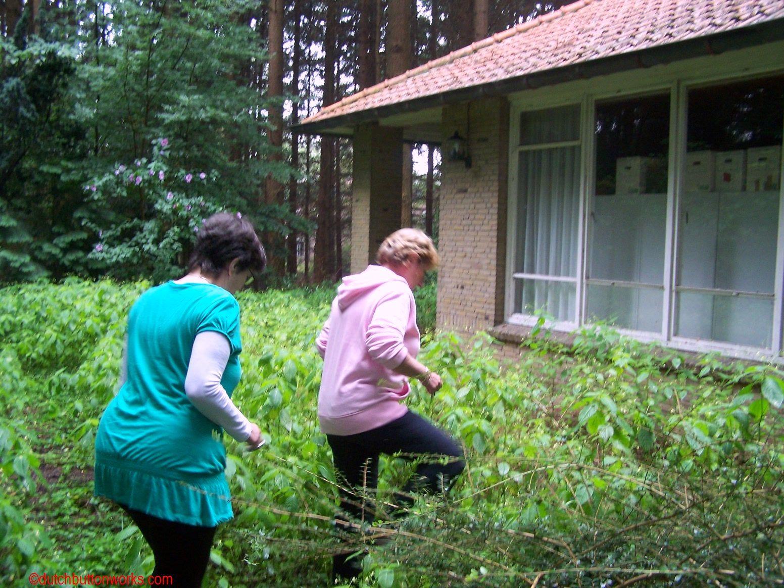 Waar is de catgut dutch button works for Vakantiehuisje bos